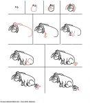 comment dessiner bourriquet